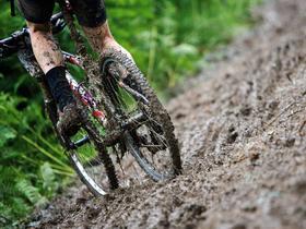 Muddy Mess...